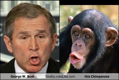 Bush+monkey.jpg