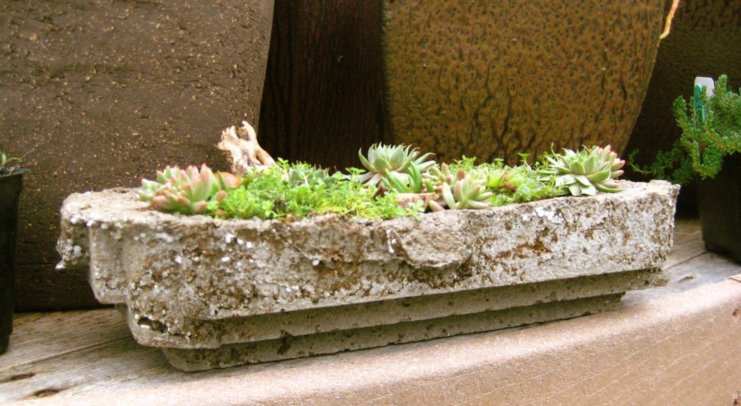 Karin grow make your own concrete planter for Make your own cement