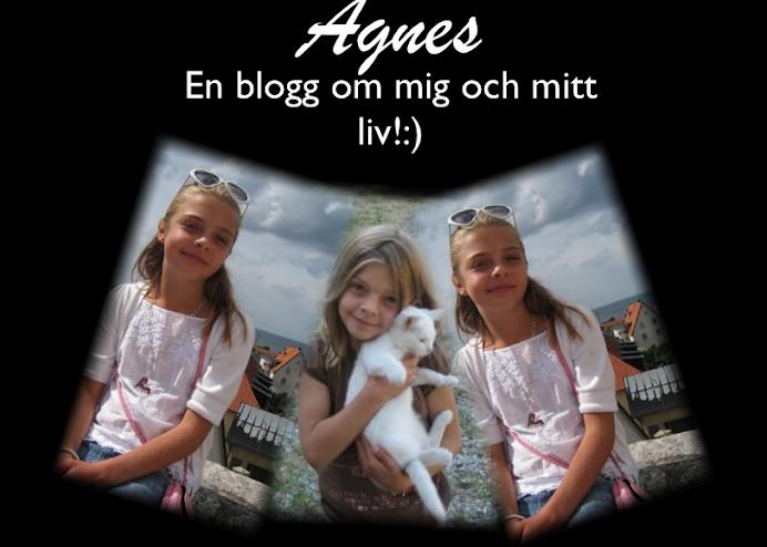 Agnes Törnerud