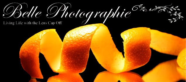 Belle Photographie