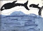 """""""Orcas"""" (8 años)"""