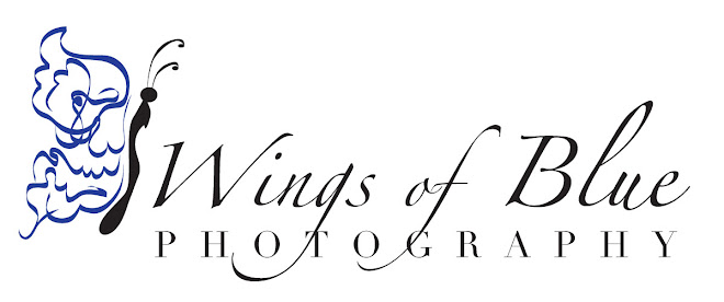 Wings of Blue Photography ~ Custom Wedding and Portrait Photographer in  Elko, NV