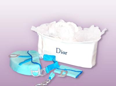 christian dior cake