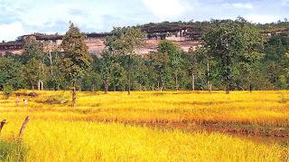 The scenery of Pha Taem