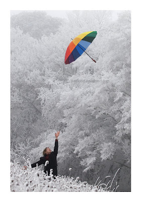عکس از چتر