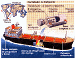Proyecto Infografía