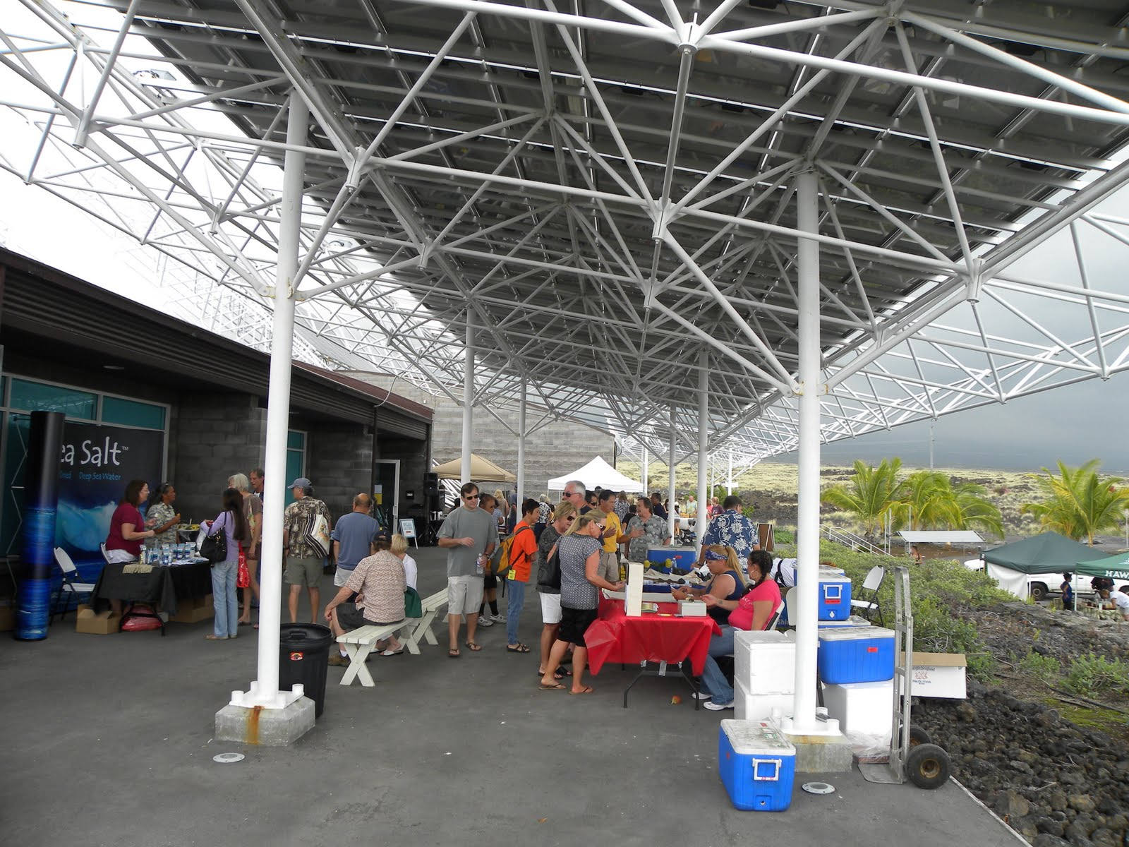 My hawaiian home seafood farmer 39 s market in kona for Kona fish market