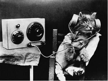 La música medicina es.