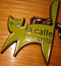 """EN ZARAGOZA """"LA CALLE INDISCRETA"""".  Un aula de medio ambiente urbano"""