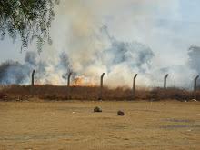 La lucha contra el fuego nos ha costado demasiadas vidas.
