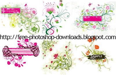 vector flower banner