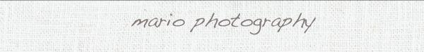 mario photograhy