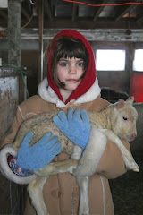 Olivia and the new lamb