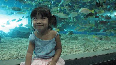 Manila Ocean Park: Oceanarium [April 2010] 13