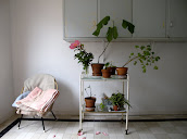 #6 Indoor Plants Decoration Ideas