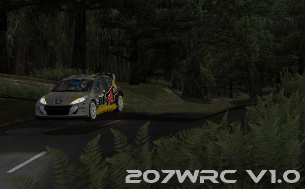 rFactor Mod 207 WRC v1.1