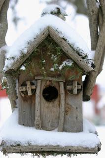 casuta pasari iarna