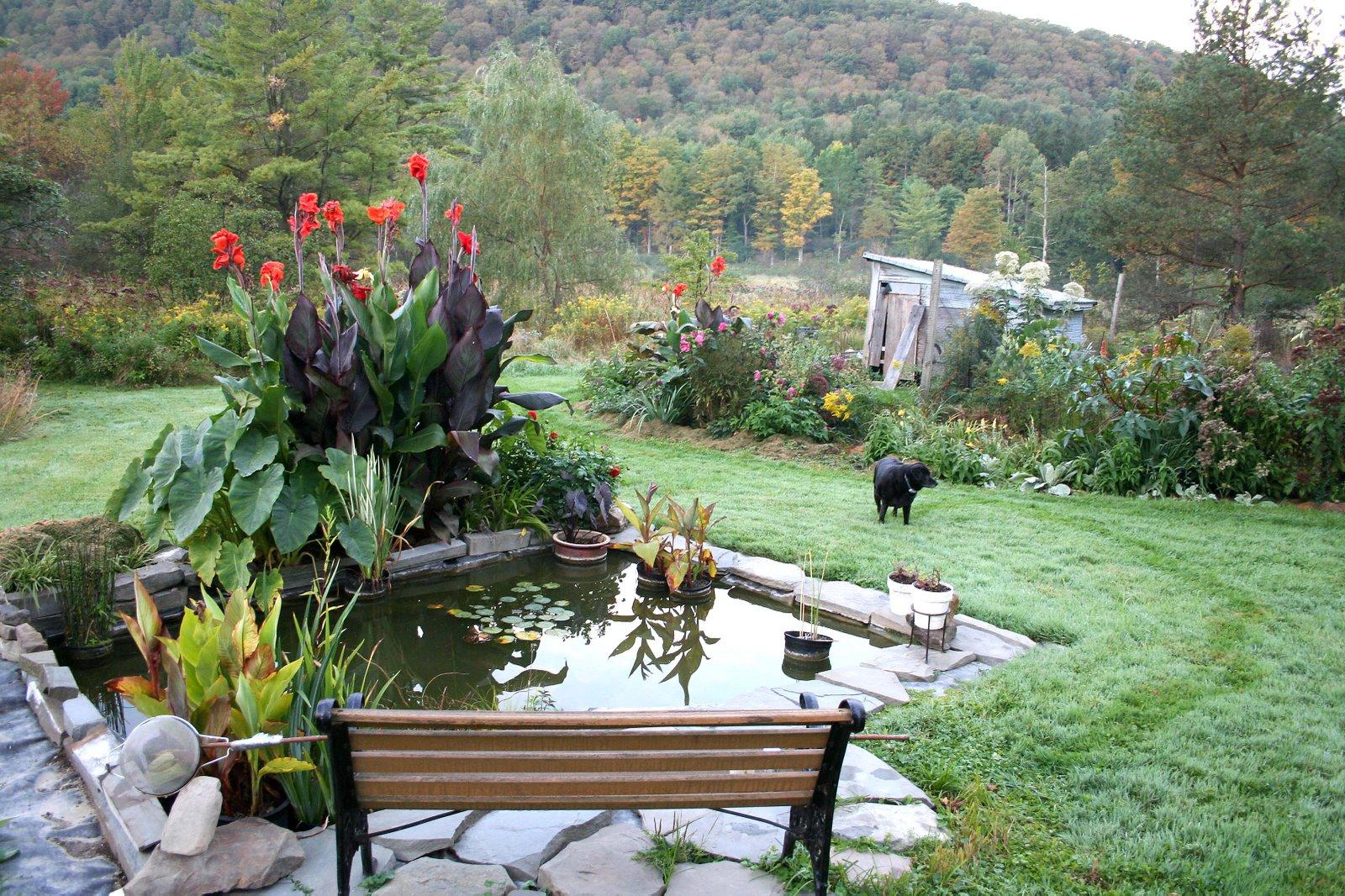 Gradini si parcuri Water_garden_redo