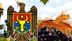 Moldova Noastra. Centrul de Monitorizare si Analiza Strategica.