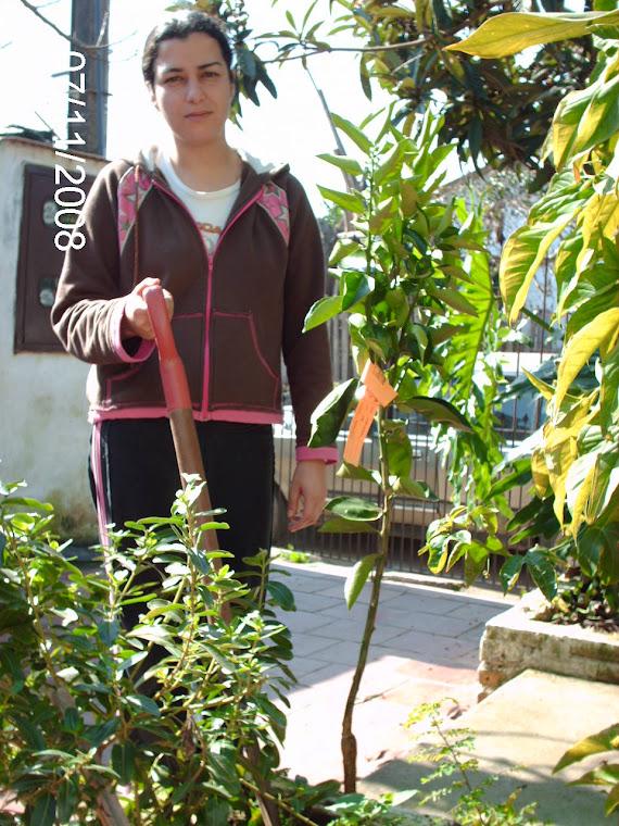 Ex aluna plantando no lugar da irmã que estuda na escola.
