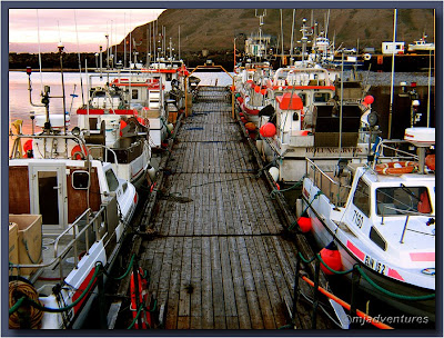 Bolungarvik_Harbour_Fishing_Fleet