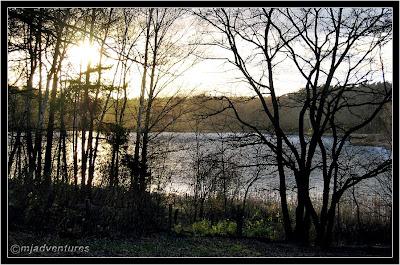 Dog_Lake