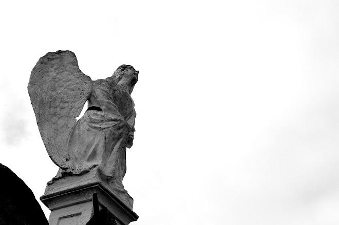 El ángel.