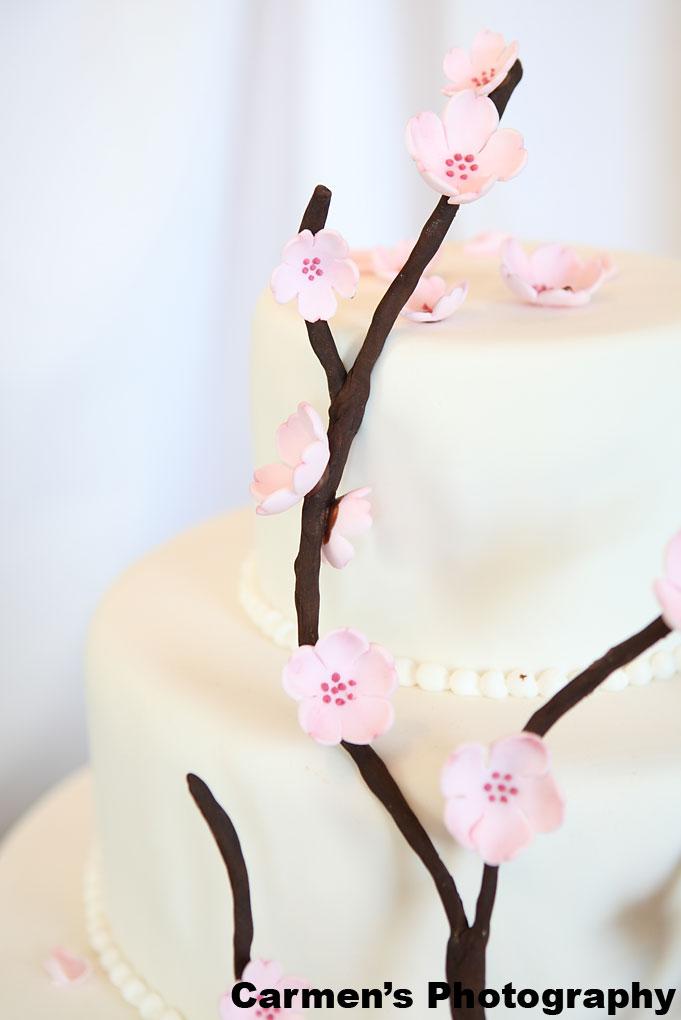 Cakes Aberdeen Sd