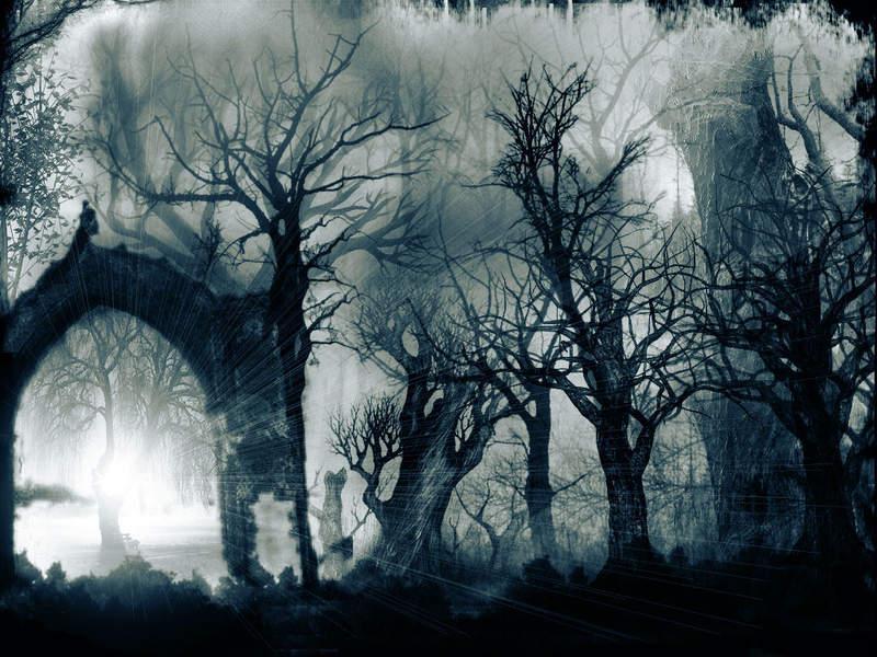 Bosque oscuro Bosque+oscuro2