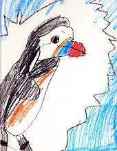 Save the Puffins!