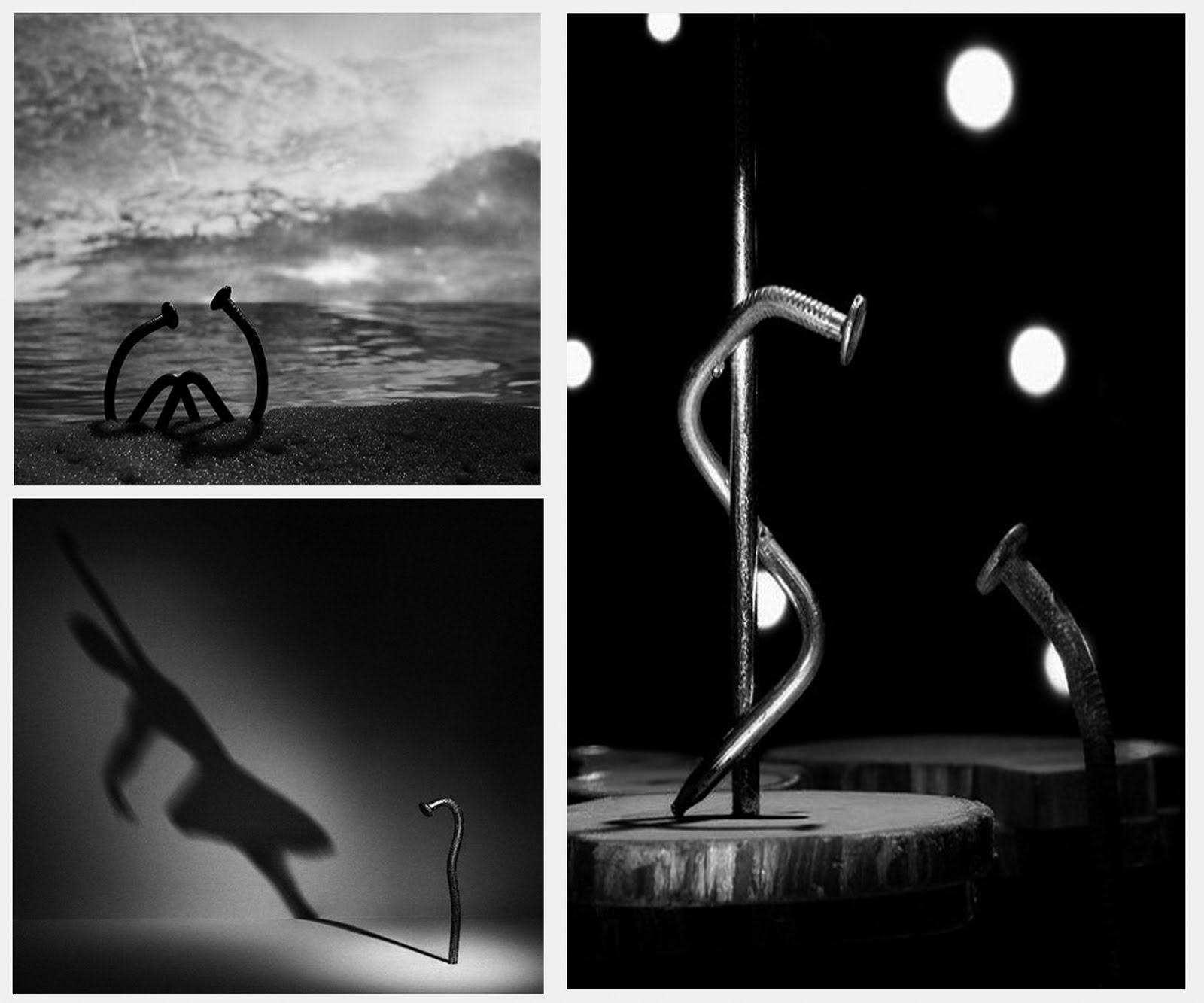 Albus: The photo series challenging established standards