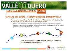 Cúpulas del DUERO. Junta Castilla y León (2010-2020)