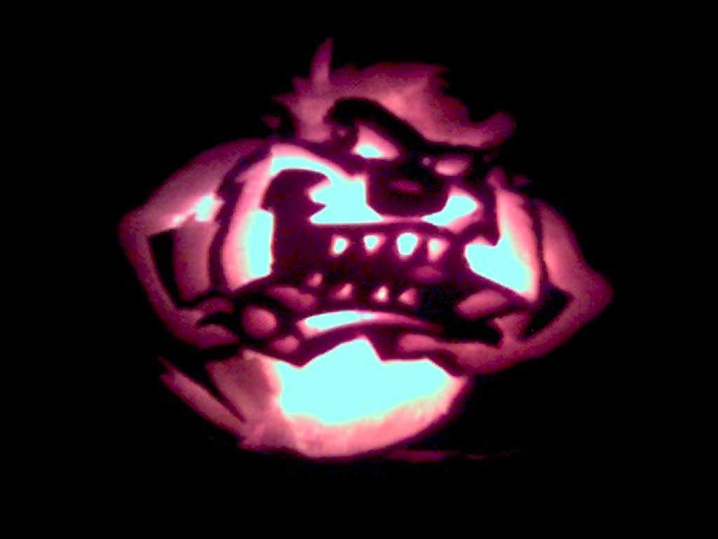 http://1.bp.blogspot.com/_V1hbANfFpgg/S8609dovobI/AAAAAAAAAHo/IyWnD0PzDbA/s1600/Tazmania+Devil+1024x687.jpg