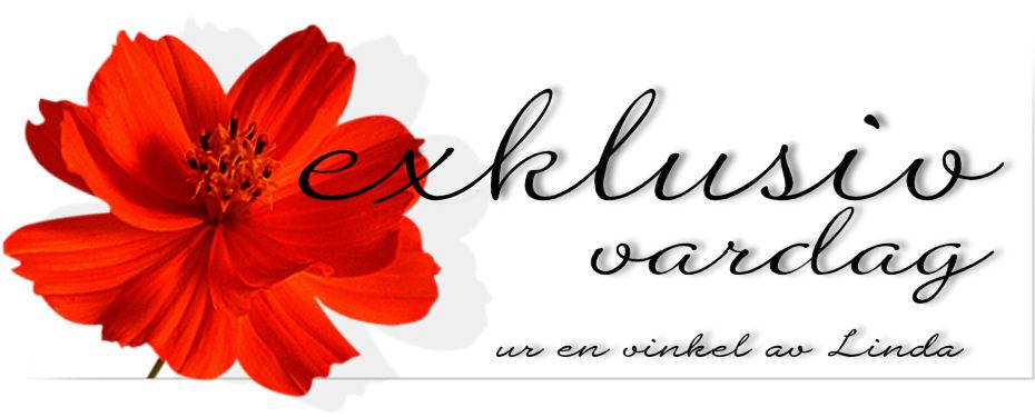 Exklusiv vardag