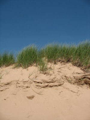 [dunes+1]