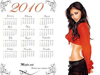 プッシーキャットドールズのカレンダー2010のHD