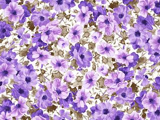 fond d'écran Fleur dessiné Wallpaper1600x1200