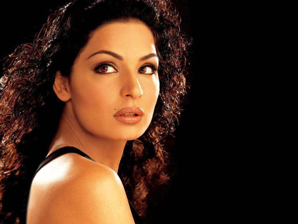 Meera Pakistani Actress - Stunning Pictures