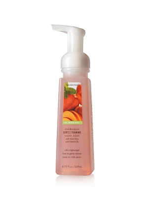 bath+and+body+works+foaming+hand+soap+nectarine+mint Nectarine Mint Anti Bacterial Products at Bath & Body Works