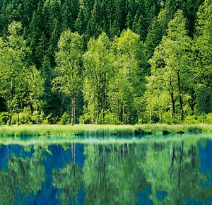 Parco Balcanico di Prespa