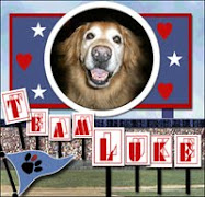 Paws crossed for Luke