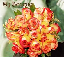 Pinata Roses
