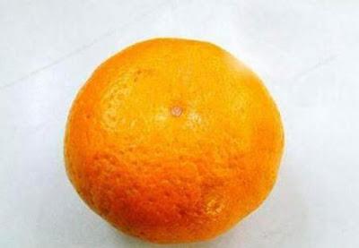 http://1.bp.blogspot.com/_VCLABPKvaS4/SujEmUXVe8I/AAAAAAAAcH0/KePbr2p1DQI/s400/orange_1.jpg