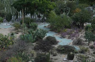 ethno-botanical garden