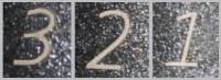 number 321