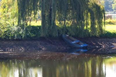 blue wooden boat