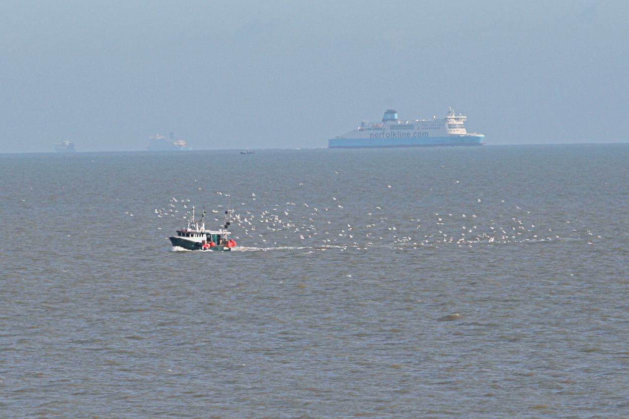 small fishing boat in English Channel followed by gulls