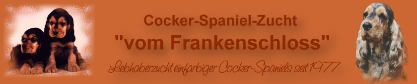 Cocker Spaniel vom Frankenschloss
