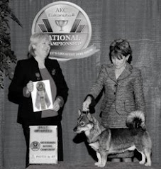 Eukanuba 2008