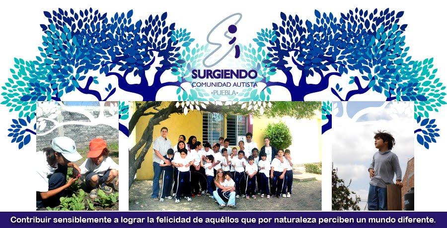 Comunidad Autista Surgiendo Puebla